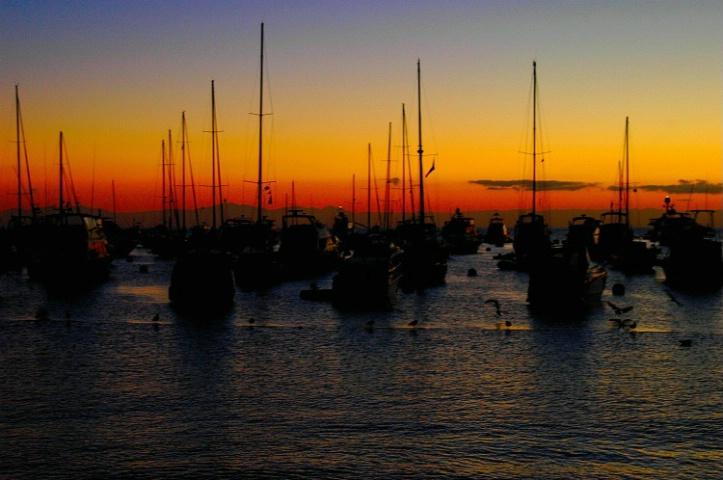 Sunrise At Catalina Island