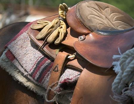 Workin Horse