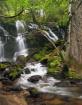 Waterfall-Sequoia...