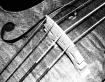 Antique Bass