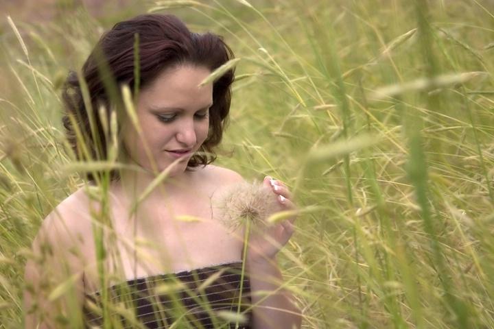 <B>The Long Grass</B>