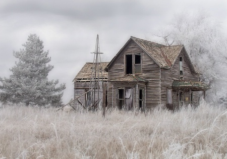 The Frost House