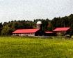 Skinner Farm