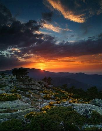 Odyssey Sunset  in Summit