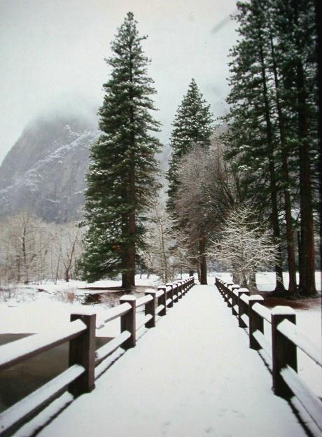 Yosemite Bridge - ID: 1017830 © Daryl R. Lucarelli