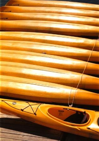 kayak non-conformist