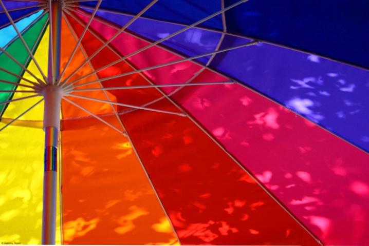 Colorbrella