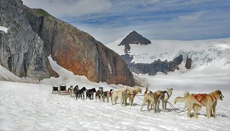 Glacier dog sled