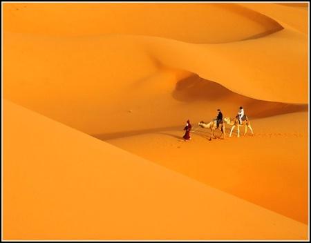 My Sahara