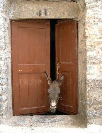 Doorkeeper