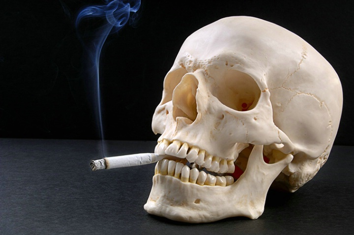 Smoking Skull - ID: 1104274 © Carolina K. Smith
