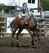 Ride 'em Cowb...