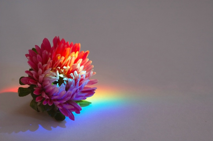 with rainbow