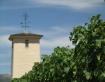 Mondavi Winery