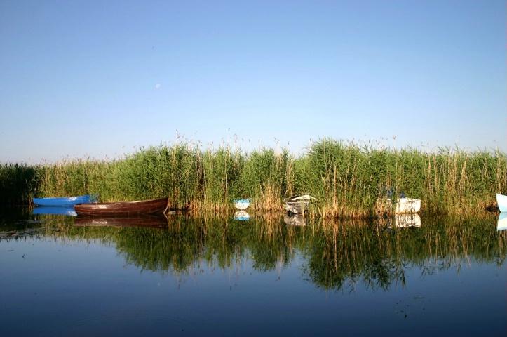 Dawn at the lake - ID: 1142362 © Ilir Dugolli