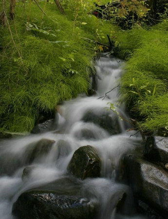 Bayhorse Creek