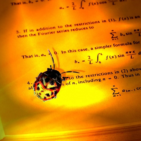 Bug's Eye View of Fourier Series, v3c
