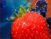 Strawberry - free...