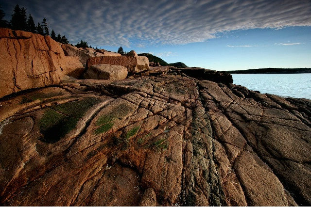 Acadia Rocks!