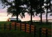 Sunset Highlights
