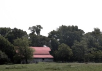 Red-roofed Barn
