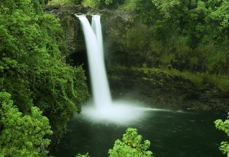 Fall in Hilo Hawall