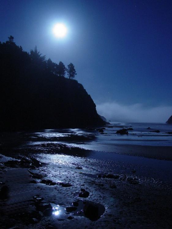 Anchor Bay By Moonlight
