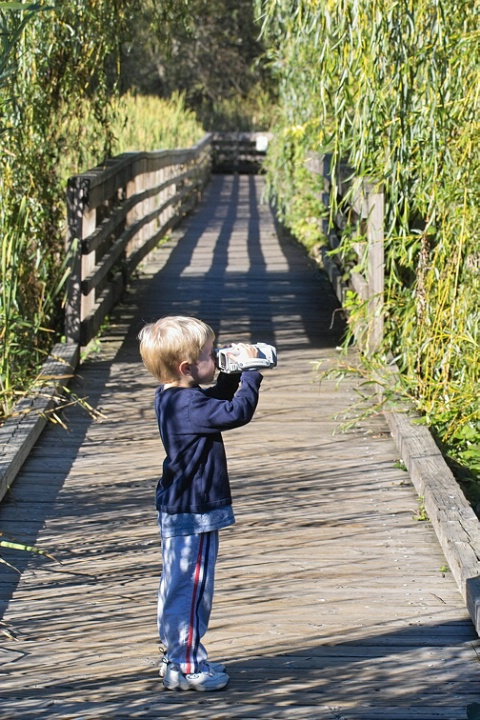 <strong>Photographer in Training</strong>