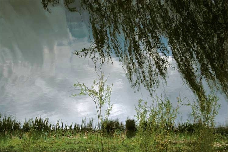 Vondelpark - Holland