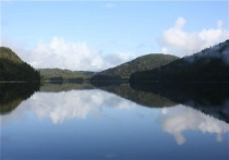 Mirrored Bay