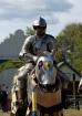 Knight In Shining...