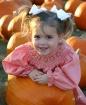 I want this pumpk...