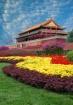 Forbidden City Fl...