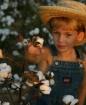 Cotton patch kid
