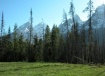 Grand Tetons in t...