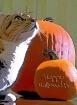 The Great Pumpkin...