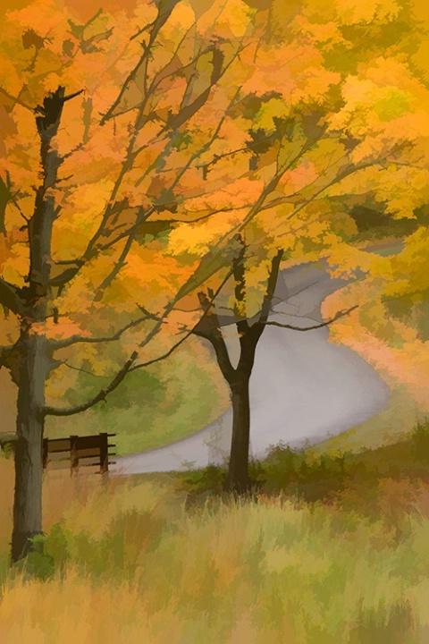 Fall Winding Road