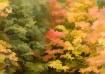 Fall 2005-3