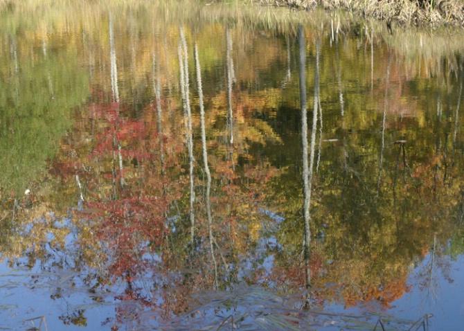 Reflections - before - ID: 1418761 © Sandra Hardt