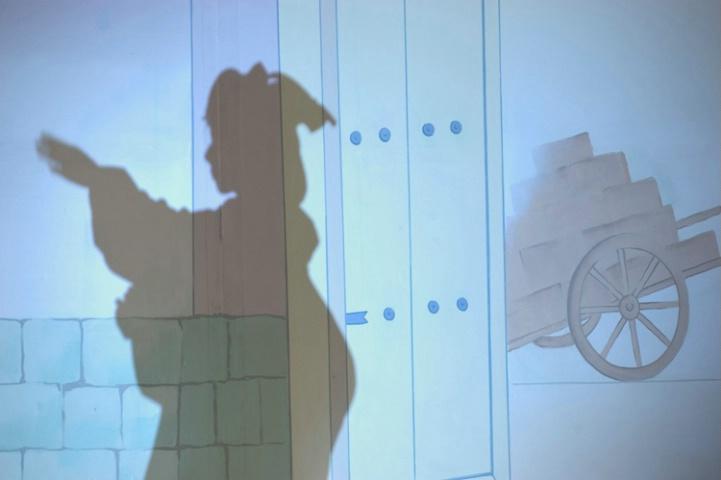 Geisha Shadow Series #2