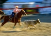 Panning Rodeo