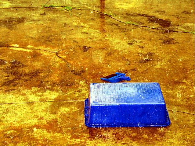 Blue Bucket in the Rain, v6