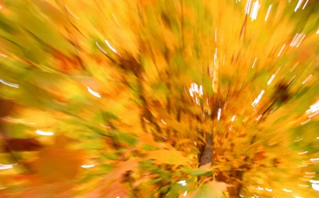 Fall Impressions #2