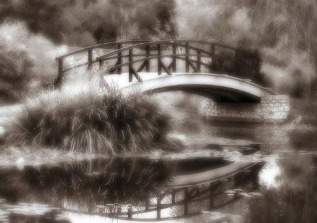 Cox Arboretum Bridge