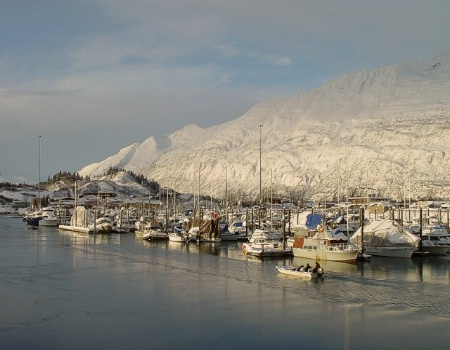 Winterized Harbor