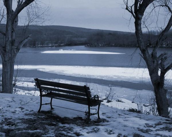 Winter Bench In Blue