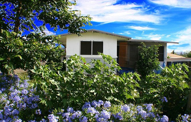 Little House In Flowers