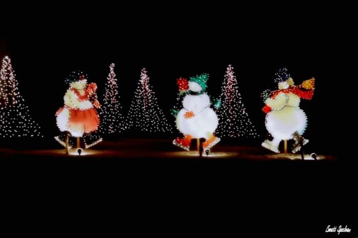 Overleys Country Christmas