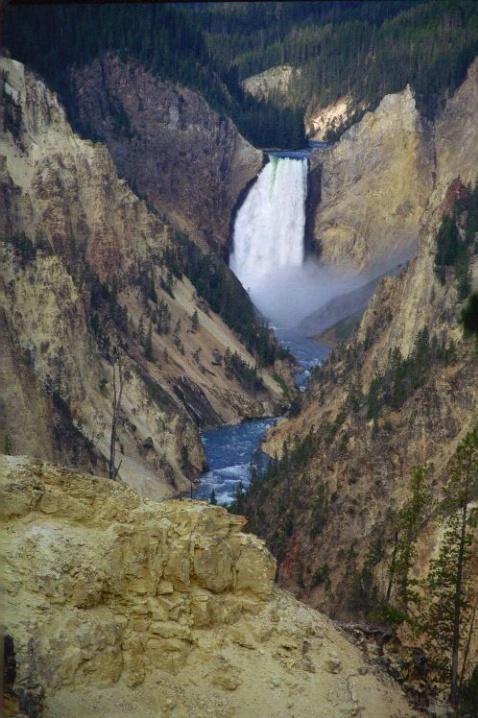 Yellowstone National Park - ID: 1577972 © Deborah A. Prior