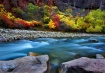 River of Color